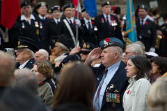 Salute. Toronto, Canada - November 11, 2012:  Veterans salute during Remembrance Day Services at Old City Hall Cenotaph Royalty Free Stock Image