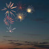 Salute of colorful firework Stock Image
