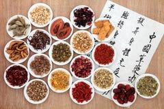 Salute di erbe cinese Fotografia Stock