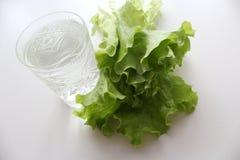 Salute e cibo, warter ed insalata sani Fotografia Stock Libera da Diritti
