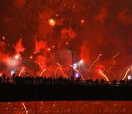 Salute firework Royalty Free Stock Image