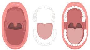 Salute orale, denti, alitosi, lingua, cattiva bocca, tonsille della gola - illustrazione Fotografia Stock Libera da Diritti