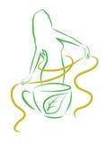 Tè per perdita di peso. Illustrazione di vettore. Fotografie Stock