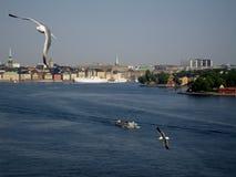 Saluti da Stoccolma, Svezia da aria e dal mare Fotografie Stock Libere da Diritti