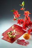 Saluto cinese di nuovo anno Immagini Stock