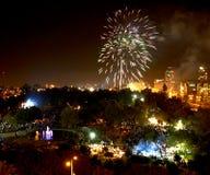 Saluto in onore della festa dell'indipendenza fotografia stock libera da diritti
