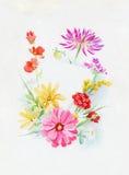 Saluto-scheda del fiore Fotografie Stock