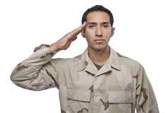 Saluts militaires hispaniques de vétéran images libres de droits