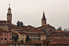 Saluzzo Foto de Stock Royalty Free