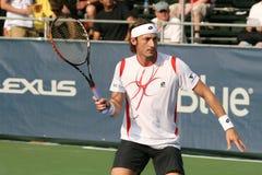 salva för tennis för ferreroforehandspelare Royaltyfria Foton