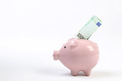 Salvadanaio di stile del porcellino salvadanaio con cento euro che cadono nella scanalatura su fondo bianco Fotografia Stock Libera da Diritti