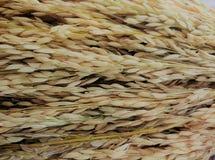 Salvado de arroz Imagenes de archivo