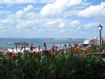 Salvador, Brazil. View of All Saints Bay in Salvador, Brazil Royalty Free Stock Photos