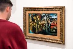 Salvador Dali målningmetamorfos av pingstliljan Royaltyfria Foton