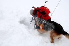 Salvador do serviço de salvamento da montanha na cruz vermelha búlgara Foto de Stock Royalty Free