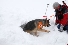 Salvador do serviço de salvamento da montanha na cruz vermelha búlgara Fotografia de Stock Royalty Free