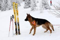 Salvador do serviço de salvamento da montanha na cruz vermelha búlgara Fotos de Stock Royalty Free