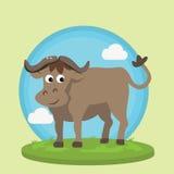 Salvaje animal del ejemplo del vector de la historieta de la diversión del carácter de la sonrisa del bisonte del búfalo en la hi Imagen de archivo