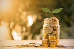 Salvar o dinheiro com moeda do dinheiro Fotografia de Stock Royalty Free