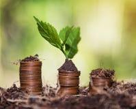 Salvar o dinheiro e explique conceito do negócio da finança do crescimento da operação bancária foto de stock