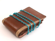 Salvar o dinheiro na carteira Imagem de Stock