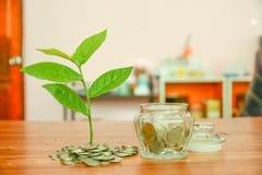 Salvar o dinheiro, salvar o conceito da economia do dinheiro Imagens de Stock