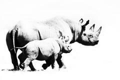Salvar o rinoceronte Fotos de Stock