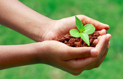 Salvare il pianeta Immagini Stock Libere da Diritti
