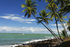 The salvation islands, french Guyana Royalty Free Stock Photography