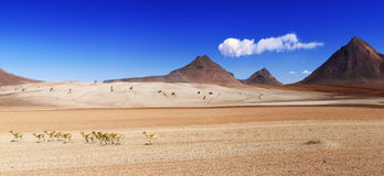 Salvator Dali desert Bolivia Royalty Free Stock Images