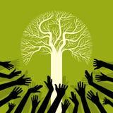 Salvi l'albero di risparmi dell'ambiente Immagine Stock