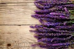 在木头的Salvia花 免版税图库摄影