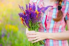 Salvia Στοκ εικόνες με δικαίωμα ελεύθερης χρήσης