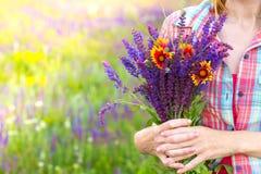 Salvia Royalty Free Stock Photos