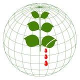 Salvo il pianeta! Fotografia Stock