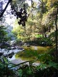 Salvo nossa cachoeira de Naning do mundo-Lata imagem de stock royalty free