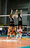 Salvo - Volleyball Al Spel 2008 van de Ster Royalty-vrije Stock Afbeeldingen