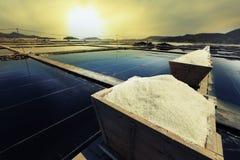 Salz Stockbilder
