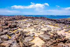Salz auf einer volcan Oberfläche Stockbilder