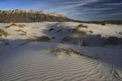 Salz-Becken-Dünen in Guadalupe Mountains National Park Lizenzfreie Stockfotografie