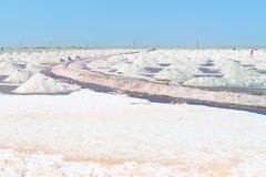 Salz, das im Salzbauernhof, Indien montiert Lizenzfreie Stockfotografie