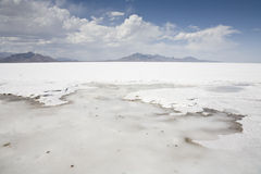 Salz-Ebenen Stockfoto
