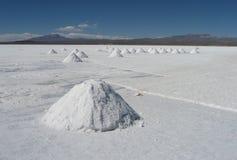 Salz-Ernte Bolivien Lizenzfreies Stockfoto