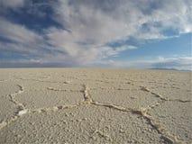 Salz in Form Salar Lizenzfreies Stockfoto