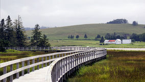 Salz Marsh Trail - Rissers-Strand, Nova Scotia Lizenzfreies Stockfoto