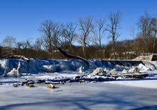 Salz-Nebenfluss-Wasserfall lizenzfreies stockbild