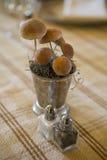 Salz-und Pfeffer-Schüttele-Apparat mit Pilz-Mittelstück Lizenzfreies Stockfoto