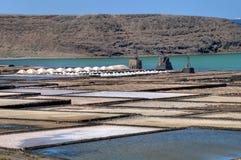 Salz-Wannen in Lanzarote Stockfotografie
