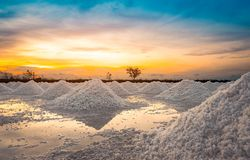 Salzbauernhof morgens mit Sonnenaufganghimmel Organisches Seesalz Verdampfung und Kristallisation des Meerwassers Rohstoff des Sa lizenzfreie stockfotos