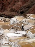 Salzbergwerkarbeiter, Salinen (Peru) Stockbilder